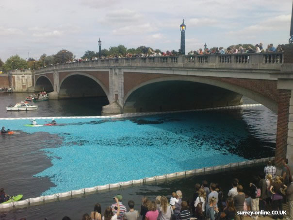 The Great British Duck Race 2009!