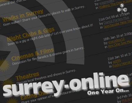 Surrey-Online One Year On...