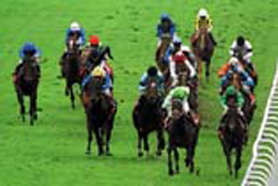 Picture of epsom-Derby