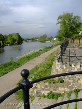 Picture of walton-on-thames-river-thames