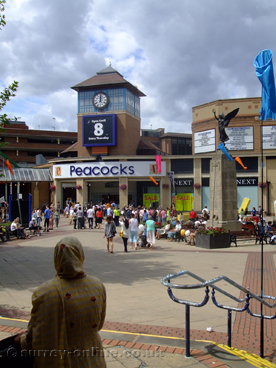 Picture of woking peacocks shopping centre